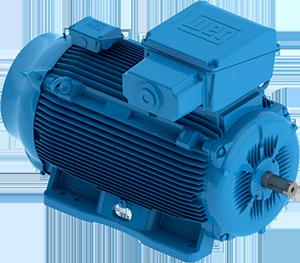 W22 line high voltage motors